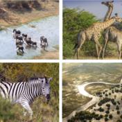 Olieboringen in grootste natuurpark van Afrika