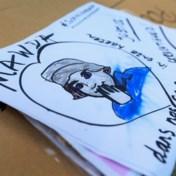 Eén jaar cel geëist tegen agent die dood Mawda veroorzaakte