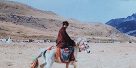 China's spraakmakendste posterboy is ' een Tibetaan