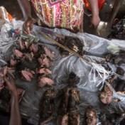 Dure balsem voor heimwee naar Afrika