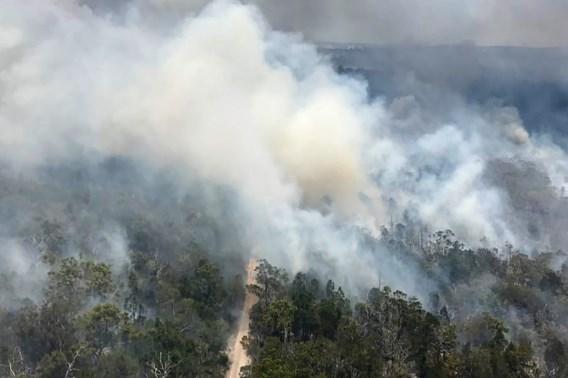 Australische Fraser Island verwoest door bosbranden