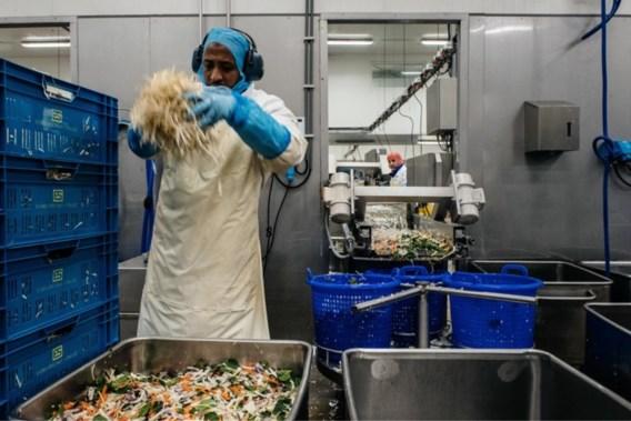 Greenyard schikt voor 500.000 euro met beurswaakhond FSMA