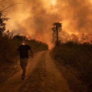 Amazonewoud is maar één kanarie in klimaatmijn