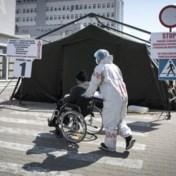 Tweede golf legt artsentekort in Centraal-Europa bloot