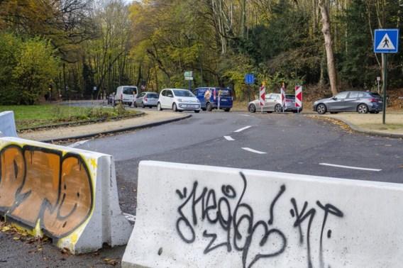 Hoe een bos de speelbal werd van Brusselse politici