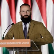 Szajers seksfeestje? 'Operatie van Duitse geheime dienst', volgens Hongaarse staatsmedia