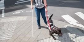 Leefsituatie van mensen met handicap in zes jaar niet verbeterd