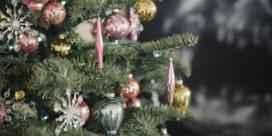 Tips om de kerstboom zo lang mogelijk mooi te houden