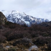 Hazenpad in Patagonië