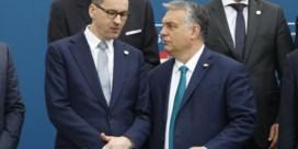 'De EU moet ons, Hongaren en Polen, eruit schoppen'