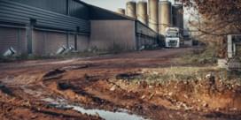 De grootste varkensboer van Vlaanderen is een Nederlander