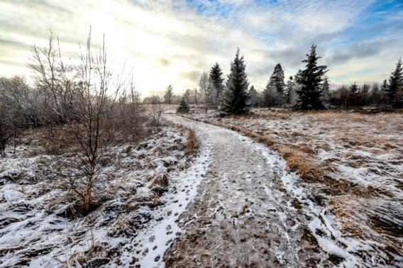 Koud en zwaarbewolkt met kans op lokale bui