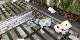 Zwerfafval in Vlaanderen opnieuw toegenomen, Zuhal Demir kondigt maatregelen aan