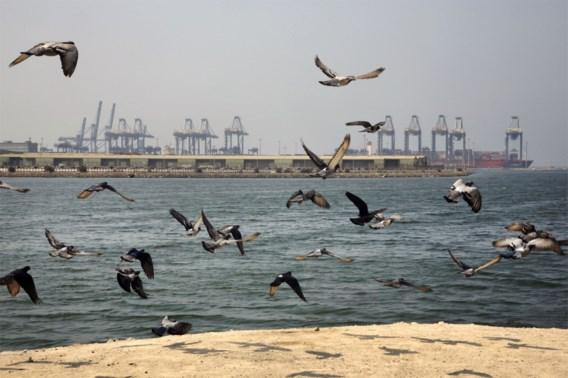 Ontploffing door 'externe' oorzaak op olietanker nabij Saudi-Arabië