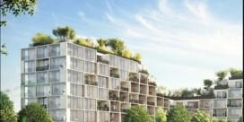 Hoogste bos van Antwerpen komt op dak in Nieuw Zuid