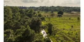 Zestienhonderd voetbalvelden aan natuurreservaat erkend