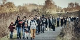 … we zo uitgelaten zouden gaan wandelen