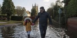 Britse winterprik raakt niet tot bij ons