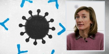 Hoe we zo snel aan een coronavaccin komen