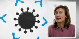 Hoe het komt dat we zo snel een coronavaccin hebben