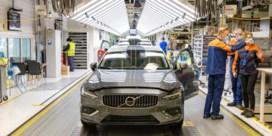 Tweede elektrisch model voor Volvo Gent