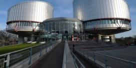 Vivaldi stuurt jonge, progressieve rechter naar Straatsburg