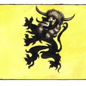 Te veel eer voor Vlaamsche hooligans