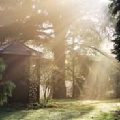 Zo kunnen onze tuinen het klimaat redden