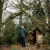 'Ik zie in mijn tuin dingen gebeuren die ik nooit eerder heb gezien'