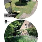 20 graden in de ene tuin, 31 graden in de andere, en dat op dezelfde dag