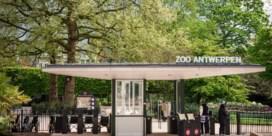 Antwerpse dierentuinen stellen investeringen uit door coronacrisis