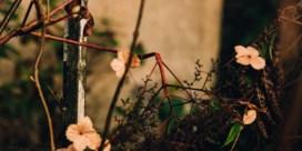 De tuinman en de dood