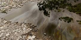 Oliereus Shell moet buigen voor vier Nigeriaanse boeren