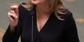 Ook 'coronacritica' wil ondervoorzitter N-VA worden