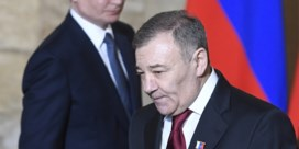 Miljardair Rotenberg beweert dat 'Poetins paleis' van hem is