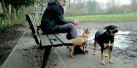 Parasiet maakt honden in Gentse losloopweide ziek