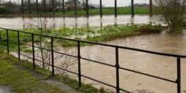 Zware regen doet waterlopen uit oevers treden in Oost-Vlaanderen