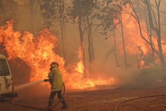 Bosbrand verwoest ruim 70 huizen nabij Perth