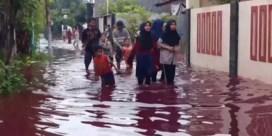 Indonesisch dorpje ondergestroomd met bloedrood water