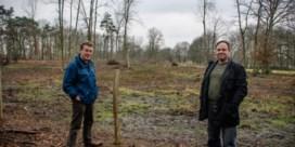 Bomenkap in natuurgebied Mispeldonk beroert de gemoederen