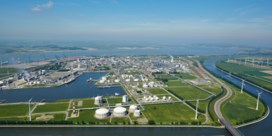 BASF bergt plannen voor gascentrale op