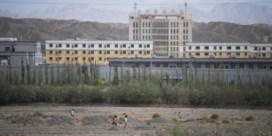 Ontmenselijkt in het Oeigoerenkamp