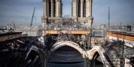 Torenspits Notre-Dame heeft eeuwenoude eiken nodig