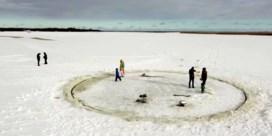 Grootvader maakt enorme ijscarrousel voor kleinkinderen