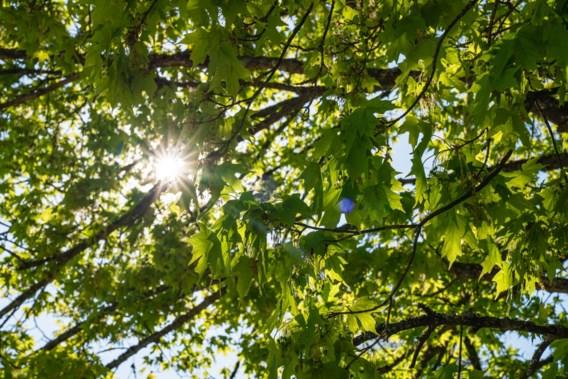 Genieten van het 'lenteweekend': wat mag wel en wat mag niet?