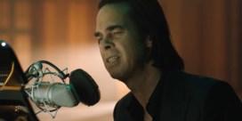 Troost van Nick Cave in brutale coronatijd