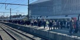 Kustburgemeesters verbolgen over overvolle treinen richting zee