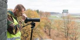 Belgisch leger houdt vlucht van kraanvogels in de gaten