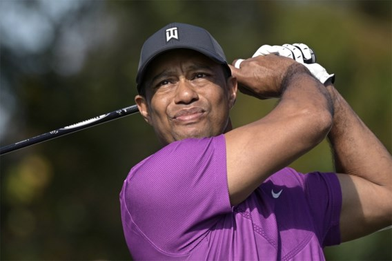 'Tiger Woods stelt het goed'