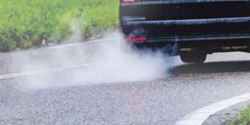 Vier vragen | Wat betekent het stikstofarrest voor Vlaanderen?
